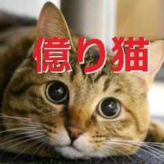 【億り猫☆】 Airdropで餌代稼ぐニャミ★'s icon'